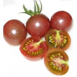 tomate black cherry cereja preto org nico 20 sementes. Black Bedroom Furniture Sets. Home Design Ideas
