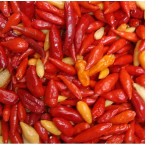 Pimenta Chili Mexicana - 20 Sementes 34e774a7f73